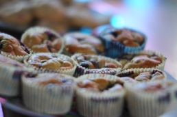 American blueberry muffins